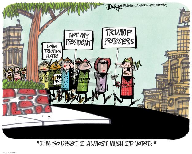 Lee Judge  Lee Judge's Editorial Cartoons 2016-11-18 vote
