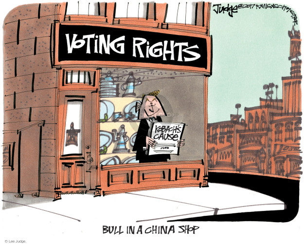Lee Judge  Lee Judge's Editorial Cartoons 2017-07-18 voting rights