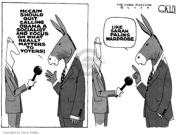 Cartoonist Steve Kelley  Steve Kelley's Editorial Cartoons 2008-10-28 2008 election