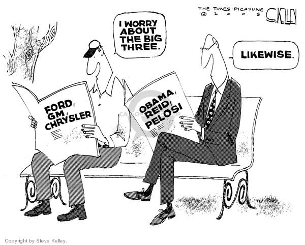 Steve Kelley  Steve Kelley's Editorial Cartoons 2008-11-11 branch of government