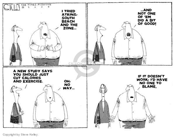 Steve Kelley  Steve Kelley's Editorial Cartoons 2009-02-27 south