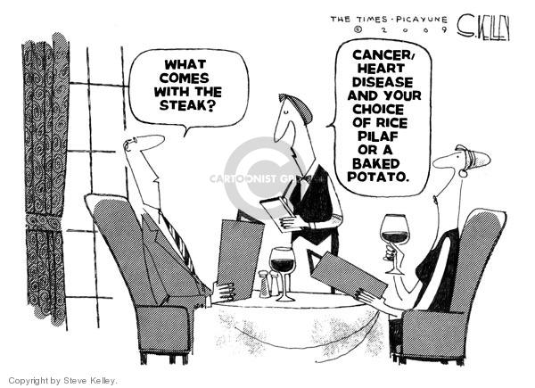 Steve Kelley  Steve Kelley's Editorial Cartoons 2009-03-27 choice