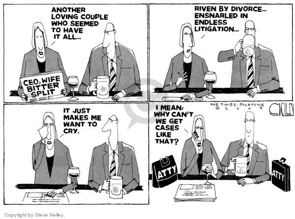 Steve Kelley  Steve Kelley's Editorial Cartoons 2009-03-27 legal
