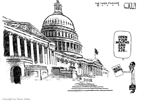 Cartoonist Steve Kelley  Steve Kelley's Editorial Cartoons 2009-09-11 congress health care