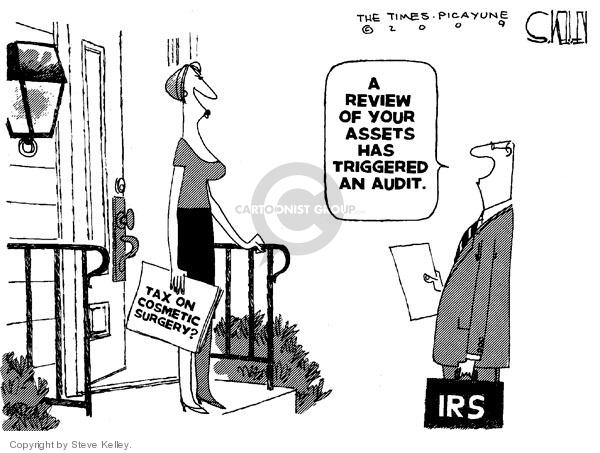 Steve Kelley  Steve Kelley's Editorial Cartoons 2009-11-25 service