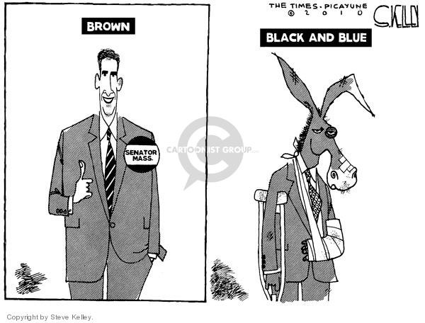 Steve Kelley  Steve Kelley's Editorial Cartoons 2010-01-21 blue