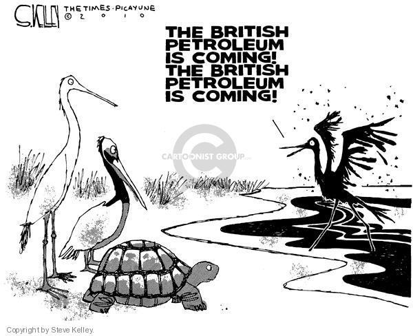 Steve Kelley  Steve Kelley's Editorial Cartoons 2010-05-23 environment