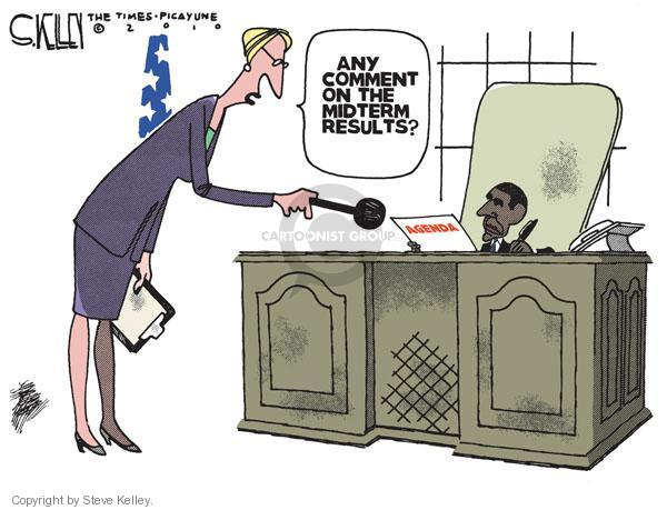 Cartoonist Steve Kelley  Steve Kelley's Editorial Cartoons 2010-11-03 implication