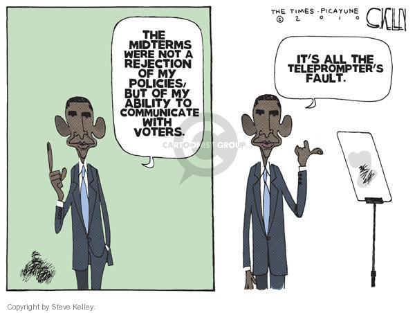 Cartoonist Steve Kelley  Steve Kelley's Editorial Cartoons 2010-11-09 issue policy