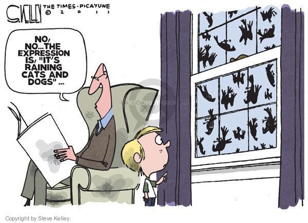 Steve Kelley  Steve Kelley's Editorial Cartoons 2011-01-06 death