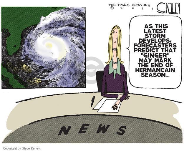 Cartoonist Steve Kelley  Steve Kelley's Editorial Cartoons 2011-11-30 election