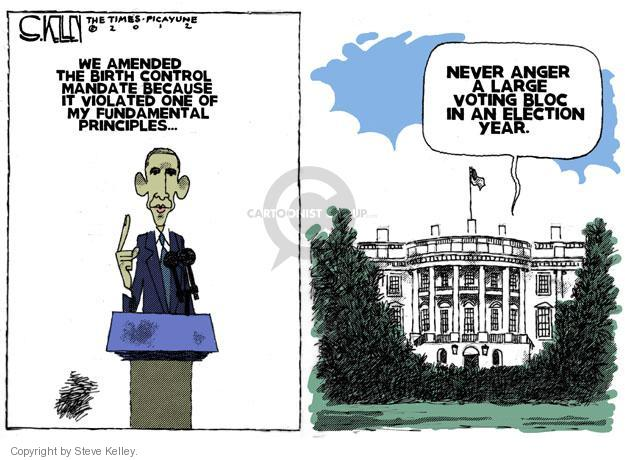 Steve Kelley  Steve Kelley's Editorial Cartoons 2012-02-12 civil liberty