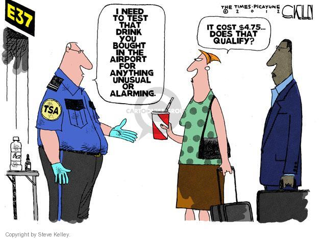Steve Kelley  Steve Kelley's Editorial Cartoons 2012-07-06 air travel