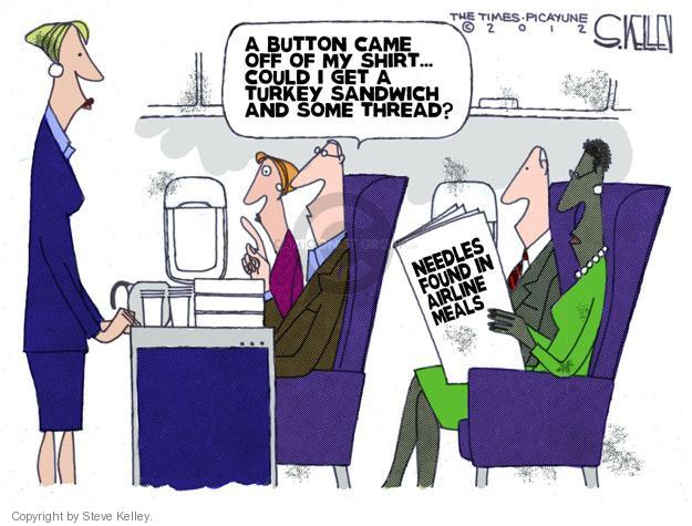 Steve Kelley  Steve Kelley's Editorial Cartoons 2012-07-19 air travel