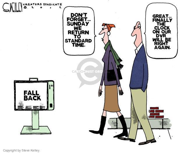 Cartoonist Steve Kelley  Steve Kelley's Editorial Cartoons 2012-11-02 finally