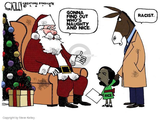 Steve Kelley  Steve Kelley's Editorial Cartoons 2012-11-27 racism