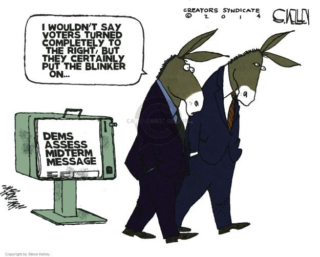 Cartoonist Steve Kelley  Steve Kelley's Editorial Cartoons 2014-11-11 election