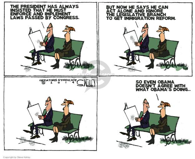 Cartoonist Steve Kelley  Steve Kelley's Editorial Cartoons 2014-11-21 laws