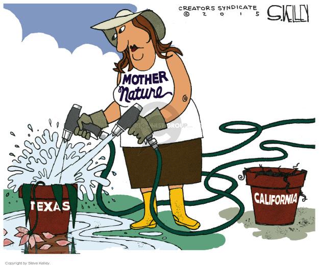 Steve Kelley  Steve Kelley's Editorial Cartoons 2015-05-26 Texas