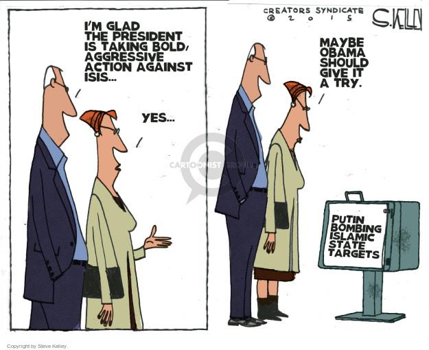Steve Kelley  Steve Kelley's Editorial Cartoons 2015-11-24 bomb