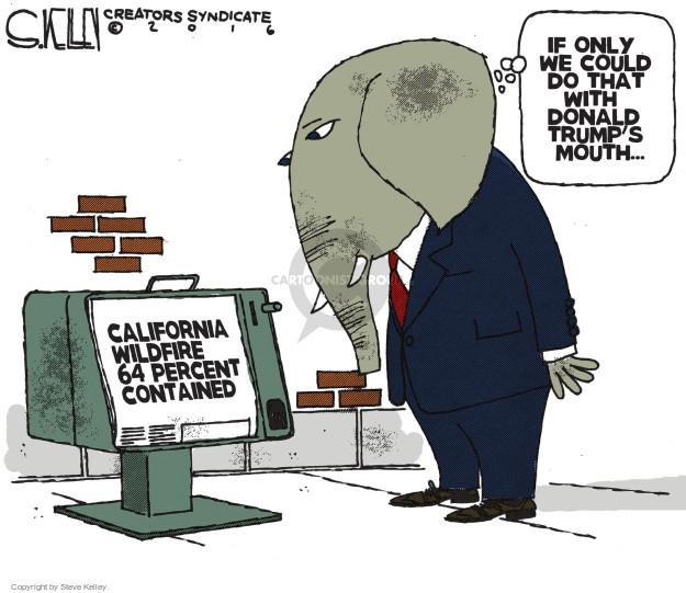 Cartoonist Steve Kelley  Steve Kelley's Editorial Cartoons 2016-08-11 fire