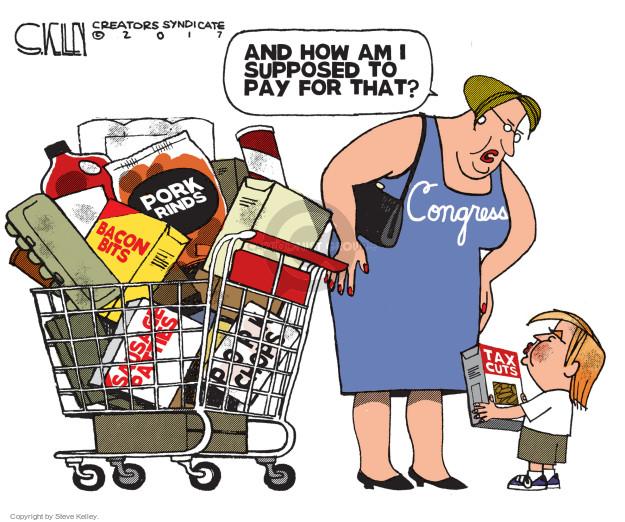 Steve Kelley  Steve Kelley's Editorial Cartoons 2017-10-24 spending cut