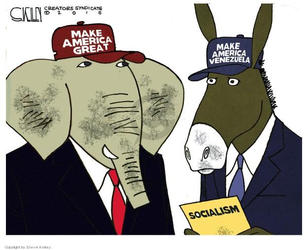 Cartoonist Steve Kelley  Steve Kelley's Editorial Cartoons 2018-07-24 left-wing