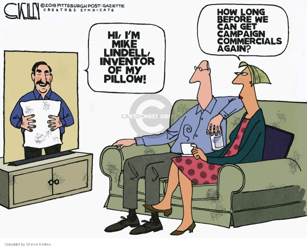 Cartoonist Steve Kelley  Steve Kelley's Editorial Cartoons 2018-11-12 election