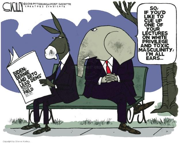 Steve Kelley  Steve Kelley's Editorial Cartoons 2018-11-19 Joe Biden