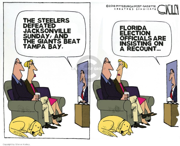 Steve Kelley  Steve Kelley's Editorial Cartoons 2018-11-21 midterm election