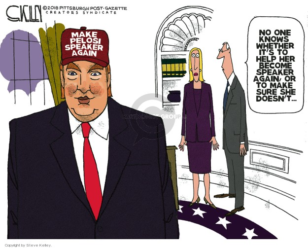 Steve Kelley  Steve Kelley's Editorial Cartoons 2018-11-25 branch