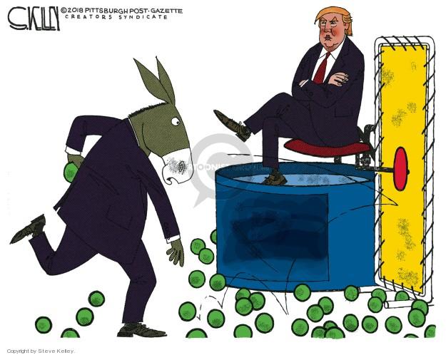 Cartoonist Steve Kelley  Steve Kelley's Editorial Cartoons 2018-12-27 left-wing