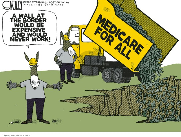 A wall at the border would be expensive and would never work! Medicare for all.