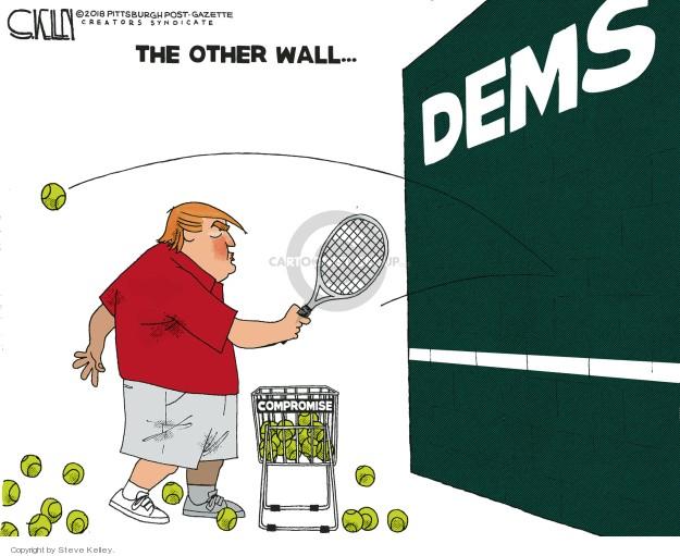 Steve Kelley  Steve Kelley's Editorial Cartoons 2019-01-09 border
