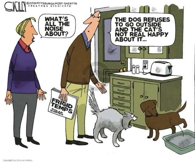 Steve Kelley  Steve Kelley's Editorial Cartoons 2019-01-31 arctic