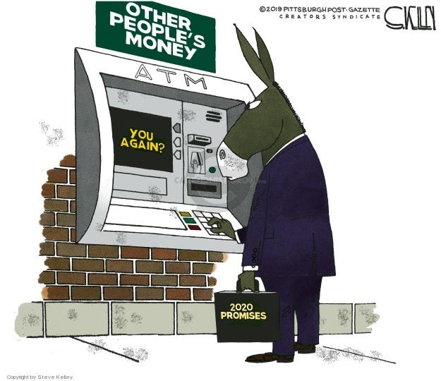 Cartoonist Steve Kelley  Steve Kelley's Editorial Cartoons 2019-02-13 left-wing