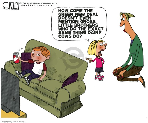 Cartoonist Steve Kelley  Steve Kelley's Editorial Cartoons 2019-02-20 gas