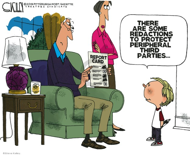 Cartoonist Steve Kelley  Steve Kelley's Editorial Cartoons 2019-04-08 political party