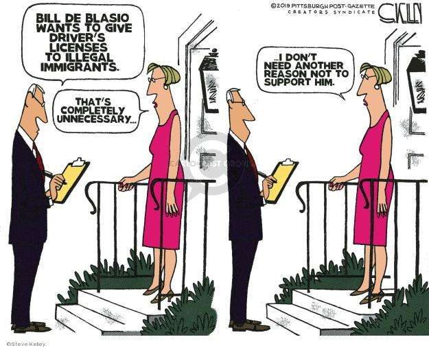 Cartoonist Steve Kelley  Steve Kelley's Editorial Cartoons 2019-06-17 illegal