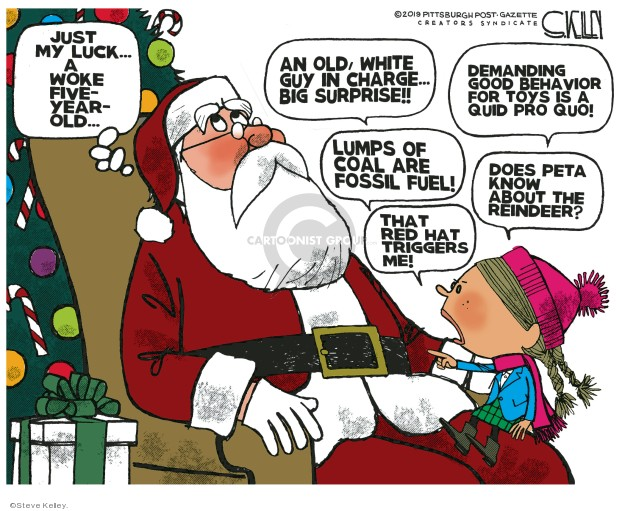 Cartoonist Steve Kelley  Steve Kelley's Editorial Cartoons 2019-12-22 guy