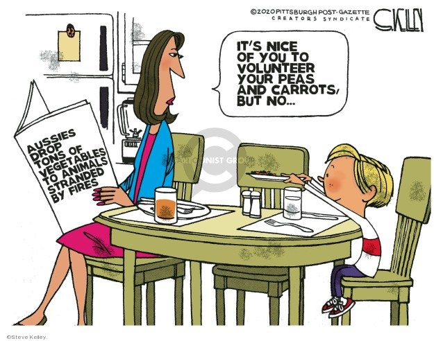 Cartoonist Steve Kelley  Steve Kelley's Editorial Cartoons 2020-01-15 fire
