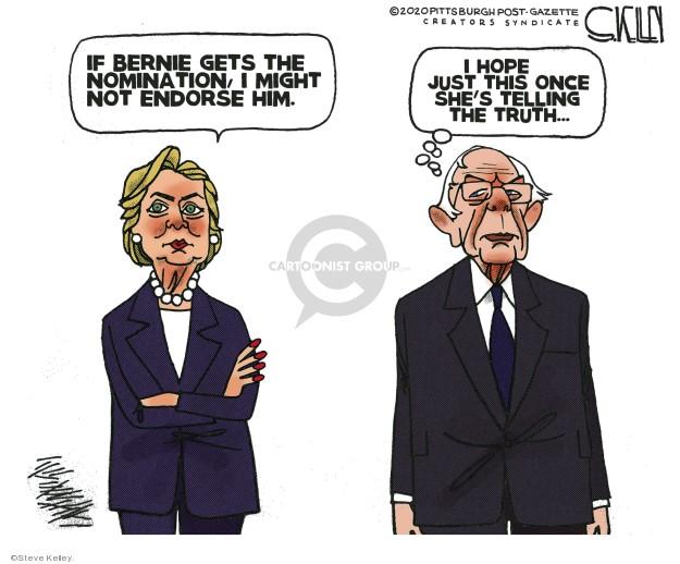 Cartoonist Steve Kelley  Steve Kelley's Editorial Cartoons 2020-01-22 2020 election