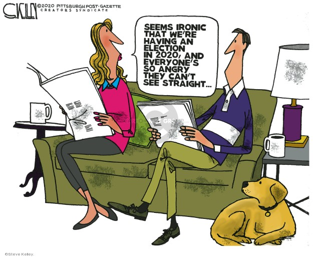 Cartoonist Steve Kelley  Steve Kelley's Editorial Cartoons 2020-02-16 2020 election