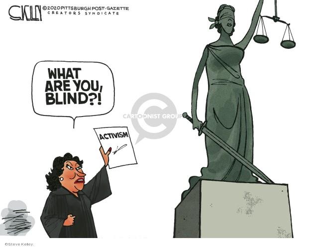 Steve Kelley  Steve Kelley's Editorial Cartoons 2020-02-26 justice