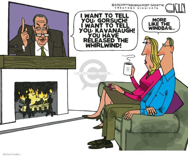 Steve Kelley  Steve Kelley's Editorial Cartoons 2020-03-06 justice