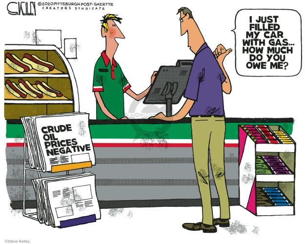 Steve Kelley  Steve Kelley's Editorial Cartoons 2020-04-23 price