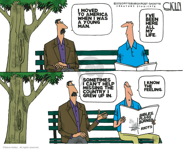 Steve Kelley  Steve Kelley's Editorial Cartoons 2020-08-09 police