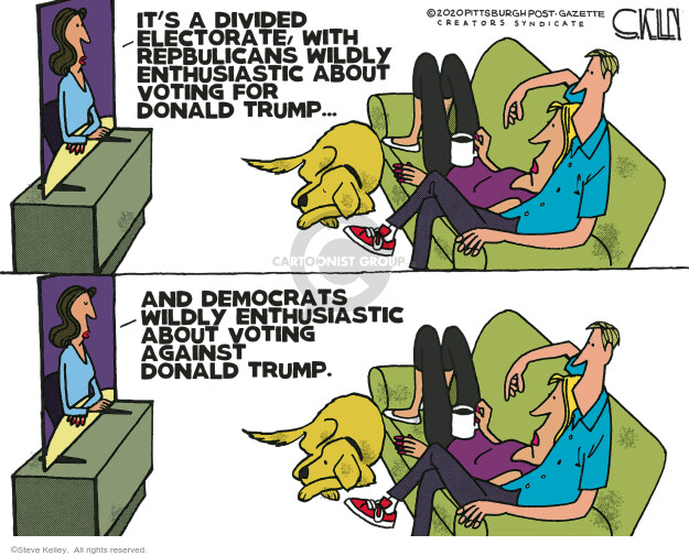 Steve Kelley  Steve Kelley's Editorial Cartoons 2020-10-18 2020 election