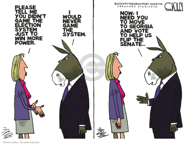 Steve Kelley  Steve Kelley's Editorial Cartoons 2020-11-13 democrat
