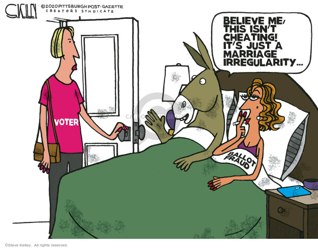 Steve Kelley  Steve Kelley's Editorial Cartoons 2020-12-06 voter fraud